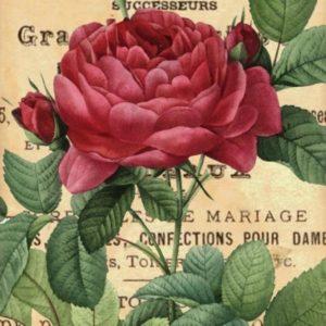 Carrelage imprimé ROSE