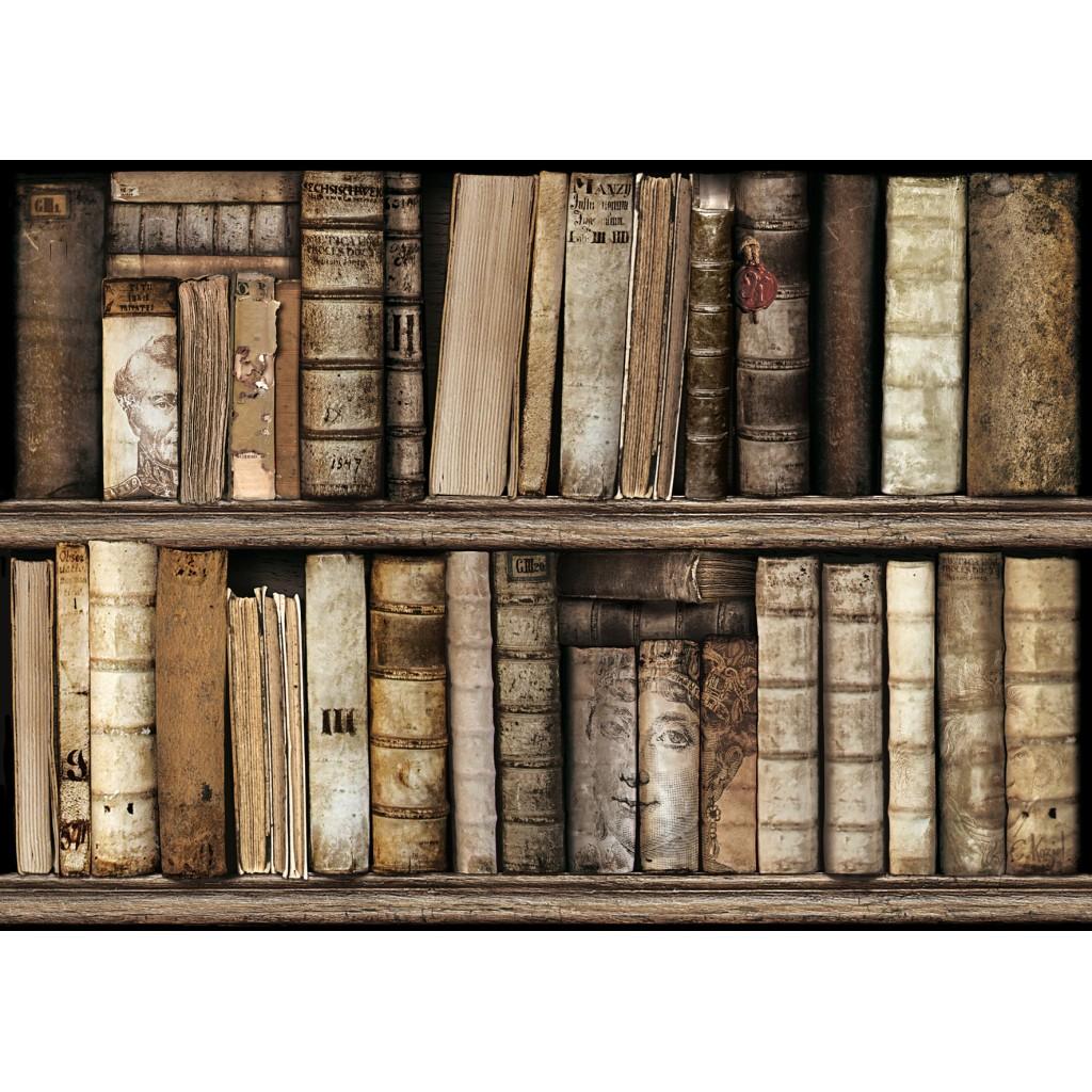 Sets De Table Papier Mod Le Biblioth Que Le Monde De Rose