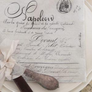 Serviettes en papier Napoléon JDL
